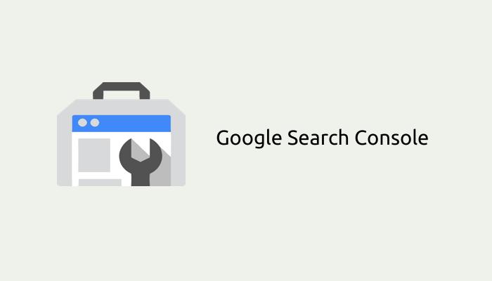 Panduan Verifikasi Domain ke Google Search Console Melalui DNS